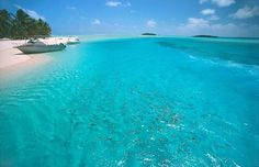 Beach and turquoise sea on Cook Islands, photo by: doug delt , used under Creative Commons License(By ND Rarotonga Cook Islands, Waves, Beaches In The World, Turquoise Water, South Seas, Island Beach, Oh The Places You'll Go, Dream Vacations, Beautiful Pictures