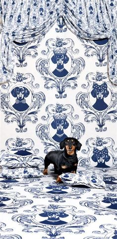 Daschund wall paper and fabric. Cmon. How fabulous. (For doxie lovers.) Check more at http://hrenoten.com