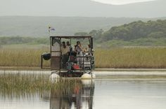 The River Rat is a a great way to see the bird life of the Klein River Best Kept Secret, Local Attractions, Mountain Range, Canoe, Rats, Habitats, Kayaking, South Africa, Tourism