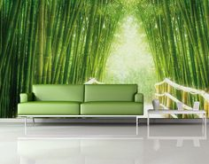 The couch is hideous, but the bamboo grove... ~ (h)