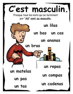 Masculine nouns in French - des noms masculins en français