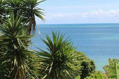 #Travel #Florianópolis #SC #Brasil #Fotografia #Praia #Photography #Viagem #ViajanteCuriosa