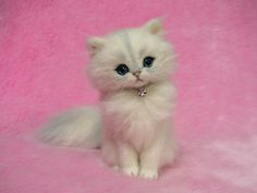 Needle Felted Silver Chinchilla Persian by LilyNeedleFelting