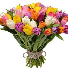 51 разноцветный тюльпан! – быстрая доставка