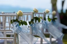White tiffany chairs each decorated with a white rose and pale blue chiffon. Tiffany Chair, Koh Samui, Wedding Chairs, Can Design, Beautiful Islands, White Roses, Unique Weddings, Chiffon, Table Decorations