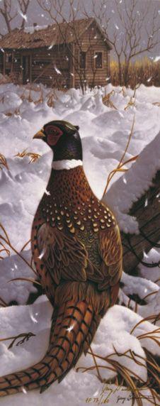 Winter's Iridescence - Jerry Gadamus - Thunder Mountain Press
