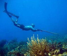 I want to spear fish before I die.