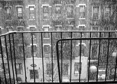 Pre-Halloween New York snow, black and white by Billie the Mixed Terrier, via Flickr