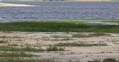 Guarapiranga é único sistema que superou chuvas esperadas para mês