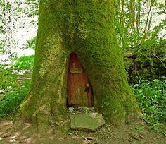 Wood Fairy door house!
