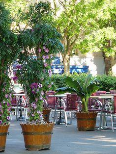 Terrasse de Café, Rouen, Normandy