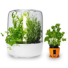 Tällaisen jos joskus saisi omaan keittiöön. Siellä sitten basilika ja korianteri eläisivät sulassa sovussa. // Fiskars KitchenGarden™, iittala.fi
