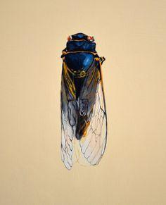 Weird Beautiful Bugs Decorative art animal print by MelissaBolger, @whiskylouise