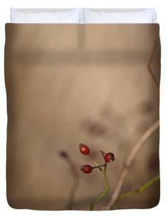 Stark Rose Hips Queen Duvet Cover by Rowena Throckmorton. Floral and nature inspired printed duvet covers. Available in Twin, Queen, and King sizes.