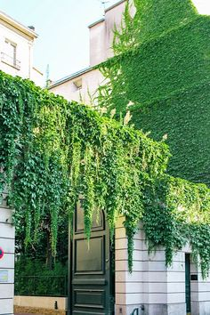 Ivy-covered gorgeousness in Paris, France
