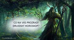 druidskz-pn