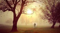"""Auf meiner Reise traf ich einen weisen, alten Mann.  Ich fragte ihn: """"Was ist wichtiger: lieben oder geliebt zu werden?"""" Er sah mich an, lächelte und sagte: """"Welchen Flügel braucht ein Vogel zu fliegen? Den linken oder den rechten?""""  Unbekannt"""