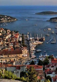 Croatia Travel Blog: A bright spot on the Mediterranean, Hvar Island offers a luxurious island lifestyle that most people dream about. Here's our guide to making the most of your Hvar Island experience. Click to find out more!