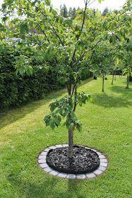 nurmikon rajaaminen - etsitkö siistiä ja käytännöllistä tapaa rajata nurmikko? Katso vinkkejä nurmikon reunanauhan ja kivetyksen käyttämiseen >>