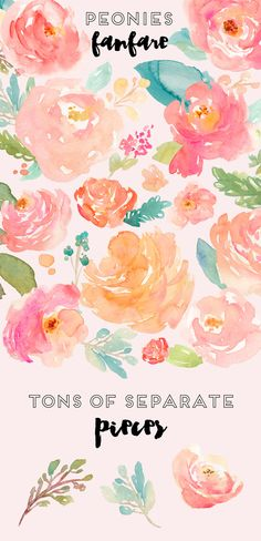 Peonies Fanfare- Watercolor Clip Art - Illustrations - 1