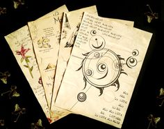 Alchemist Journal Pages, Adventurer diary, spells and alchemy ingredients, game pages, dwemer ruin excavation, daedric symbols