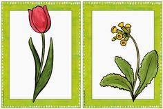 Elementary lessons in primary school: picture cards early bloomers – Baby Utensils Ideas Spring Activities, Activities For Kids, Art Education Lessons, Thing 1, School Pictures, Picture Cards, Science, Primary School, Art Drawings