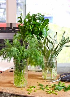 How to Keep Herbs Fresh | ASpicyPerspective.com #howto #herbs #cooking