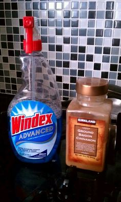 Ant problem?? Windex kills them on the spot! Then use cinnamon where they were coming in. Totally works!!!