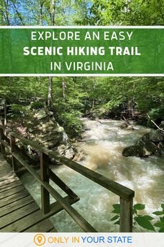 If you're looking for an easy hiking trail in Virginia, this mile long hike may be for you. It offers beautiful scenery and stunning natural pools. | Things To Do | Outdoors | Waterfalls | Natural Waterslides | Swimming Holes | Family Friendly Vacation Destinations, Vacation Ideas, Hiking In Virginia, Natural Pools, Waterfall Hikes, Virginia Is For Lovers, Swimming Holes, Backyard Games, Beautiful Places To Visit