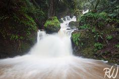 Cataract Falls After Big Rain Storm, Marin County, California  http://www.rwongphoto.com/blog/mount-tamalpais-watershed/  #waterfalls #marincounty