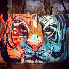 tanai_tigrohaud | graffiti | streetart