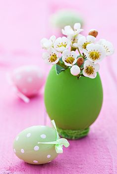little flowers in an egg cup