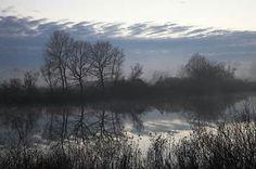 Lonjsko polje, nature park