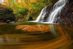 #岩手県#花巻市#葛丸渓谷#一の滝#滝#落ち葉#落ち葉アート#自然#風景#秋#紅葉 #follow #bestphoto_japan #bestjapanpics_ #jp_gallary #PHOS_JAPAN #japan_of_insta #lovers_nippon #tokyocameraclub #東京カメラ部 #japan_daytime_view #photo_shorttrip #7flowers_1day #art_of_japan #autumn_mania #igs_asia #retrip_news #instagramjapan