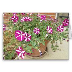 Blossom with Abundance Card