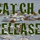 Michigan's widespread toxic fish problem redefines 'catch and release'