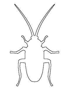 Cockroach Pattern