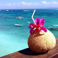 Drink something yummy out of a coconut on a beautiful beach like this.