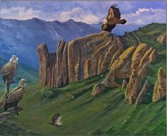 Alessandro Sacchetti - Wildlife Painter: Griffon voltures at Los Mallos