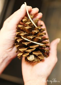 How to make easy pinecone fire starters- perfect for camping! #camping  skiptomylou.org