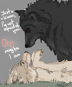 Stiles & Derek as wolves (Sterek)