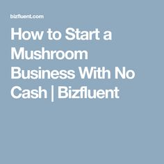 How to Start a Mushroom Business With No Cash | Bizfluent