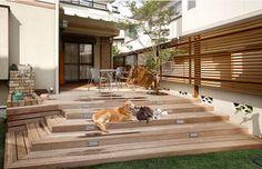 犬と暮らす家 実例紹介 ミサワホーム
