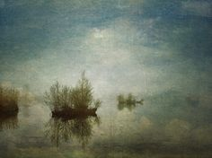 Dutch landscape / Maarsseveense plassen IV