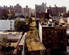 Photograph by Joel Sternfield  The High Line is a public park built on a 1.45-mile-long (2.3 km) elevated rail structure running from Gansevoort Street to West 34th Street on Manhattan's West Side. Previously, the High Line was a freight rail line, in operation from 1934 to 1980. It carried meat to the meatpacking district, [...]