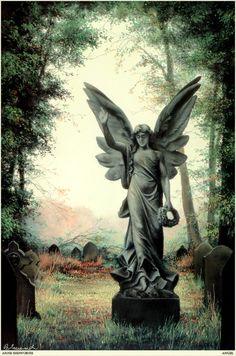 Angel by Anne Sudworth