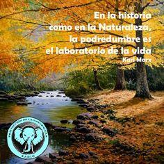 ¡Únete a la frecuencia de la Naturaleza! http://escoladelser.wixsite.com/naturalezaproteccion
