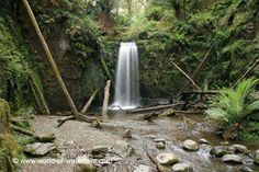 Marriners Falls  Great Otway National Park, Victoria, Australia