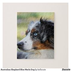 Shop Australian Shepherd Blue Merle Dog Jigsaw Puzzle created by hellocute. Black Labs, Black Labrador, Equine Photography, Animal Photography, Black Lab Puppies, Corgi Puppies, Dog Grooming Business, Herding Dogs, Blue Merle