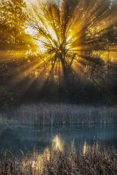 Sunshine by Arkadiusz Ziomek